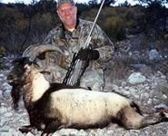 American Ibex Hunts with professional hunting guide Dan Moody Hunting Services in Texas