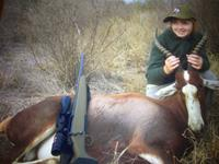 Blesbok Hunts with professional hunting guide Dan Moody Hunting Services in Texas