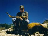 Catalina Goat Hunts with professional hunting guide Dan Moody Hunting Services in Texas