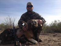 Corsican Ram Hunts with professional hunting guide Dan Moody Hunting Services in Texas