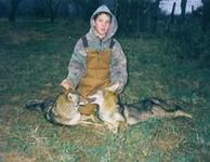 Coyote Hunts with professional hunting guide Dan Moody Hunting Services in Texas