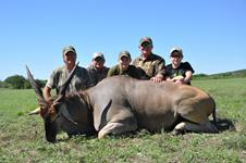 Eland Hunts with professional hunting guide Dan Moody Hunting Services in Texas
