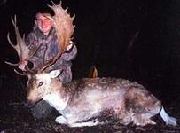 Fallow Hunts with professional hunting guide Dan Moody Hunting Services in Texas