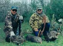 Javalina Hunts with professional hunting guide Dan Moody Hunting Services in Texas