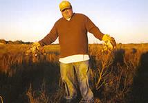 Quail Hunts with professional hunting guide Dan Moody Hunting Services in Texas