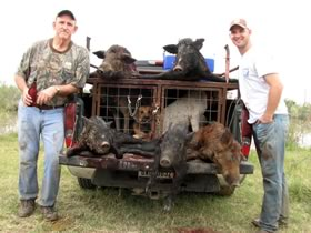 Limited time Hog Hunting Trip