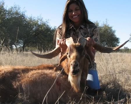 Ibex hunt in Texas