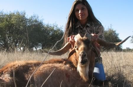 Catalina Goat hunt in Texas