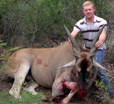 Eland Hunt in Texas